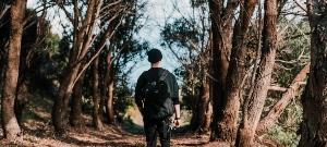 Longer walks (10km+)