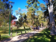 Princes Park loop walk, Carlton North