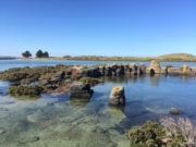 Port Fairy to Griffiths Island walk