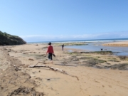 Apollo Bay walk